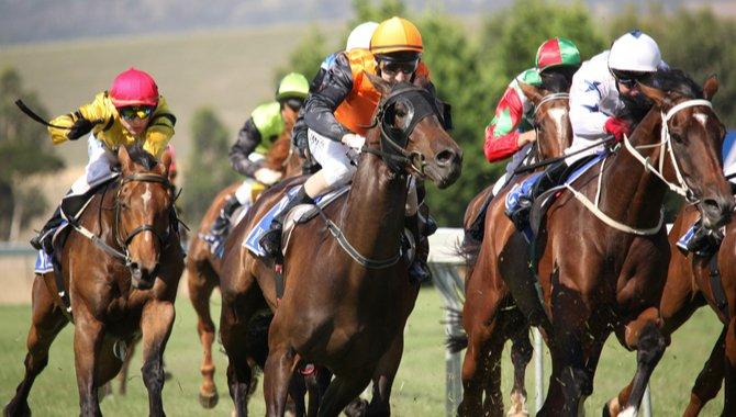 racing victoria meldet einen anstieg der einsätze um 33